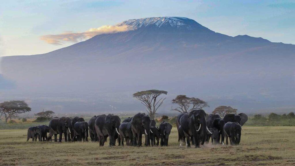 beutiful National Reserve