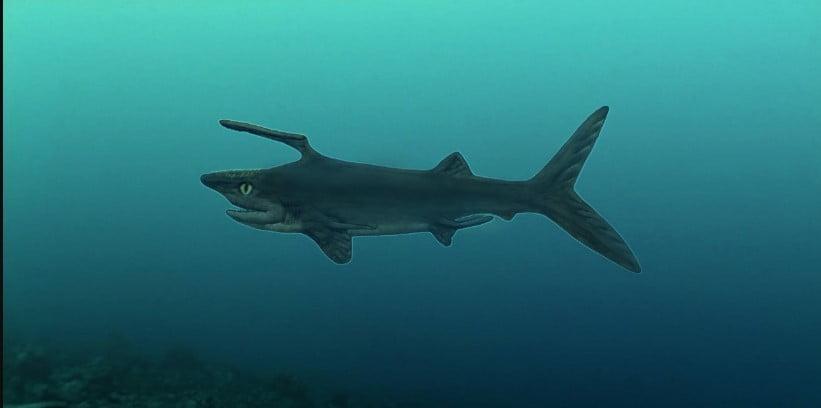 Extinct Sharks