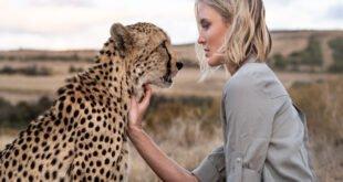 cheetah as a pet