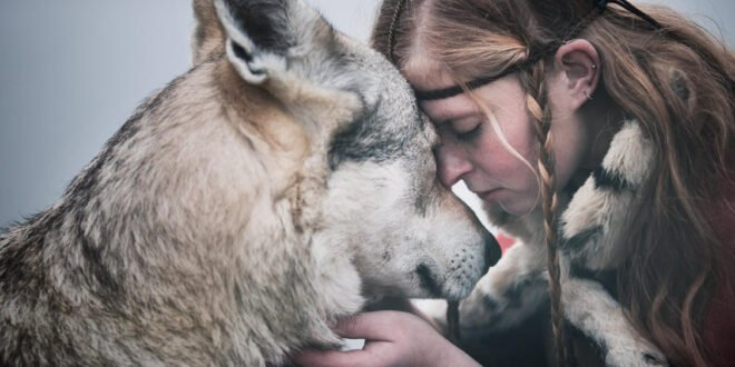 Most loving Animals To Humans