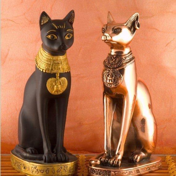 sphynx egyptian cat